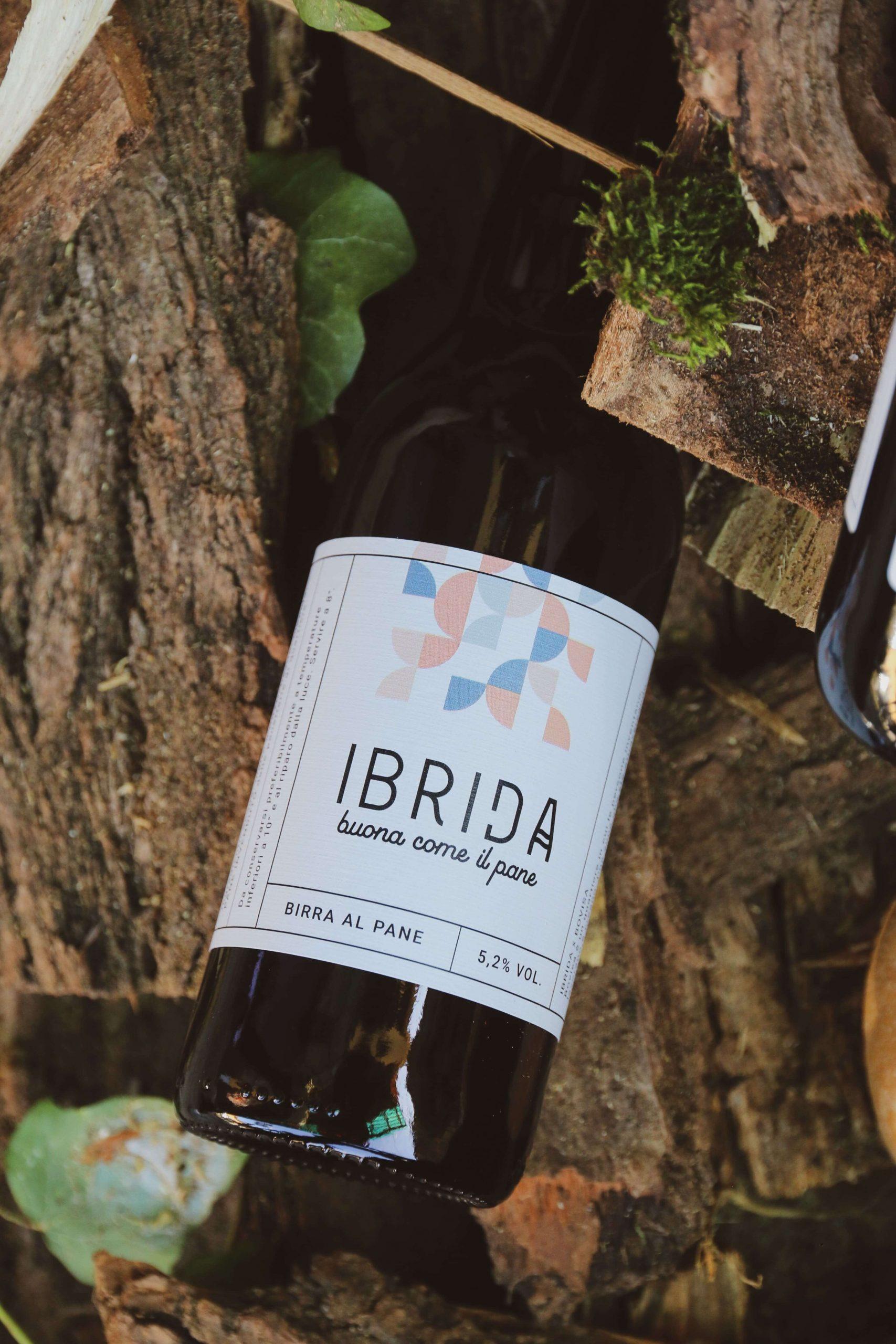 Ibrida Birra in the wild